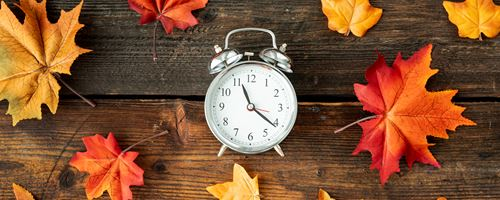 THE CLOCKS GO BACK: What to do with the extra hour Image